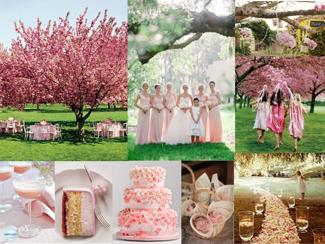 blossom wedding1